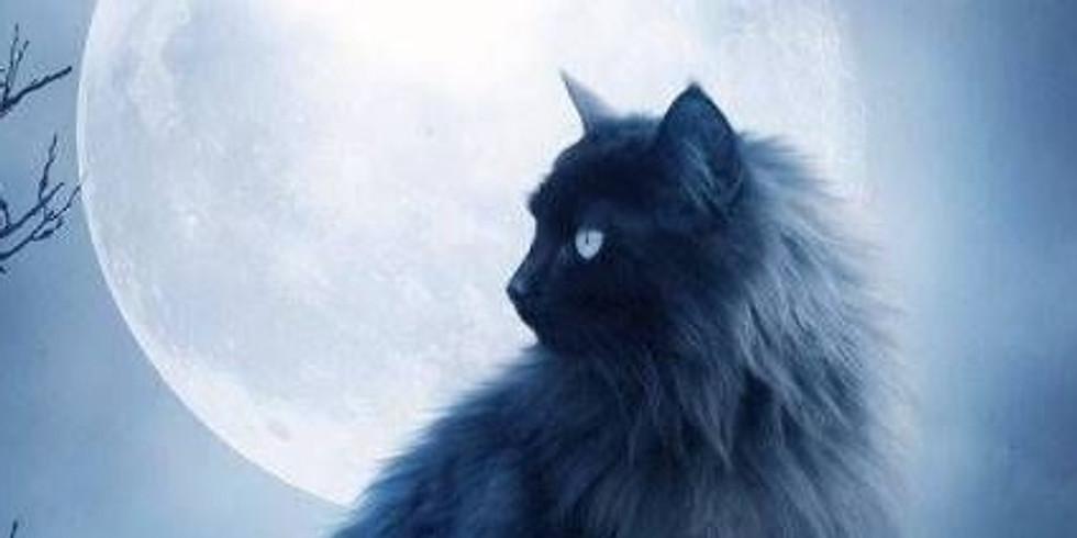 Curso Online: Animais de Poder e Guardiões