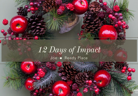 12 Days of Impact- Joe