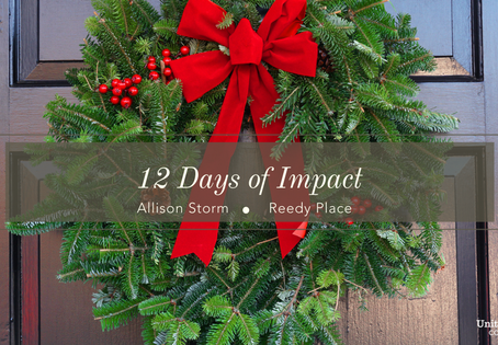 12 Days of Impact- Alison Storm & Reedy Place