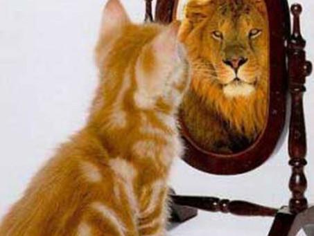 Muchas veces, ganar es perder. La maldición del Orgullo y la Arrogancia.