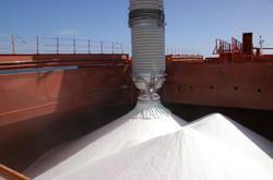 Cement & Fertilizer