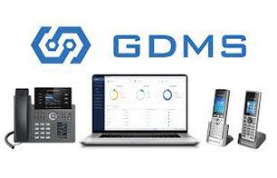GDMS.jpg