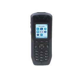 Avaya_Wireless_Handset_3745.jpg