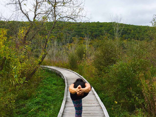 Let's return to find balance…