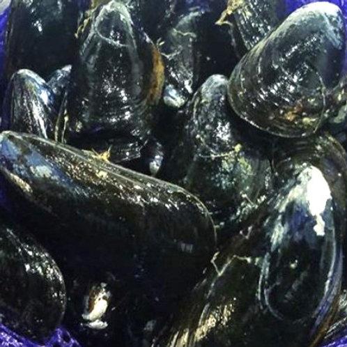 Frozen Black Mussels 1 lb. vacuum pack