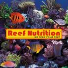 Reef nutrition 1.jpg