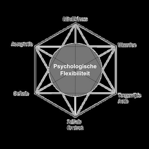 mindfulness_transp2.png