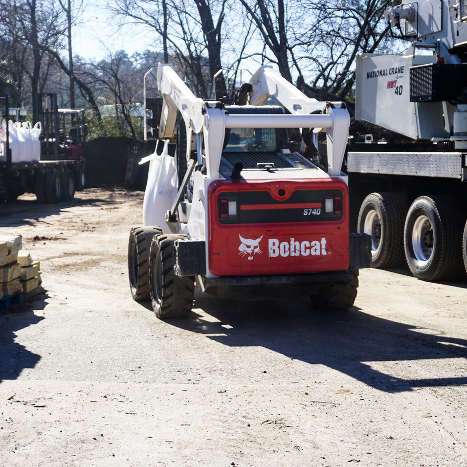 bobcat on site