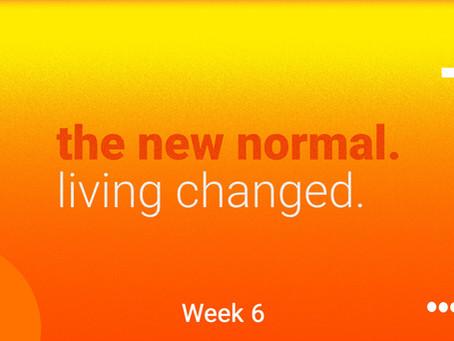 Week 6 Content