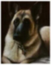 taylor dog portrait 8x10.jpg