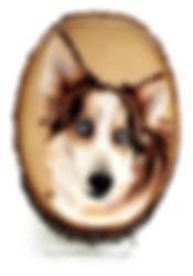 wood medium pet portrait for brucerevise