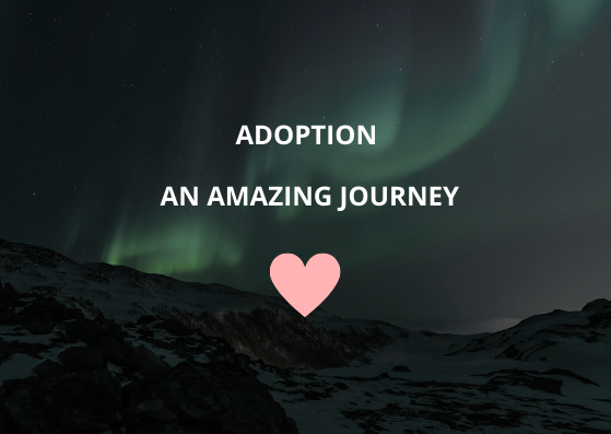Night image of Nothern Lights with snowy mountain and a caption of Adoption...An Amazing Journey