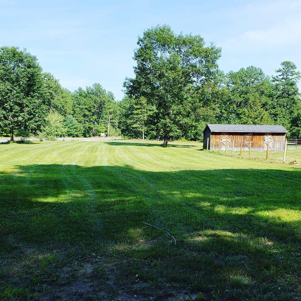 Farm Yard.jpg