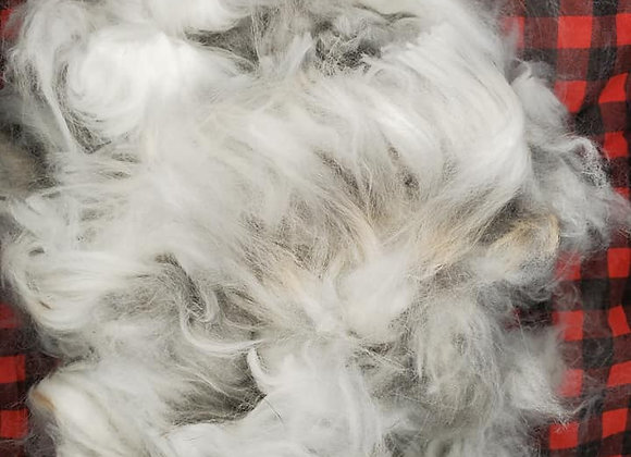 Raw Angora Fiber By the Ounce