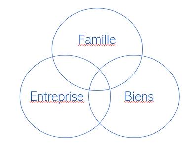 Cercles Famille - Entreprise - Biens.PNG