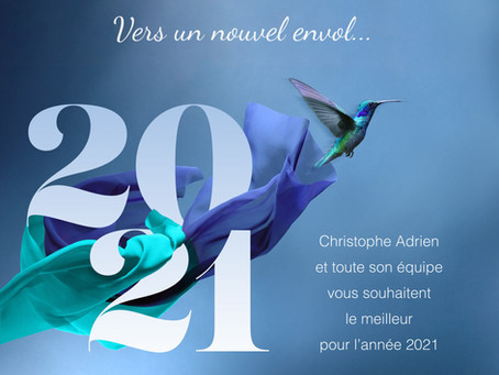 Meilleurs Voeux / Happy New Year 2021 !