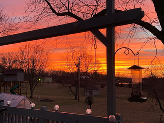 Letter from the Editor:                         The beauty of a sunset