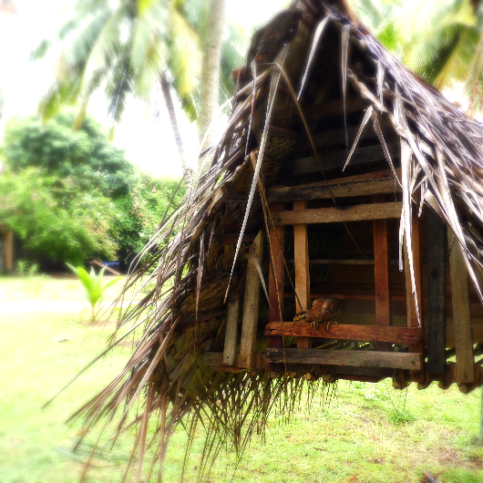 Hanging Chicken house