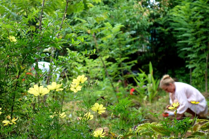 Amuura Permaculture Garden, Bentota, Sri Lanka