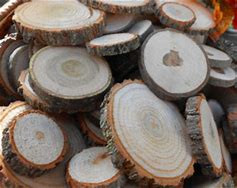 Selection of log slices