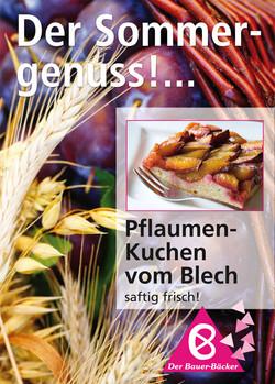 Bauer_Plakat-Zwetschgen.jpg