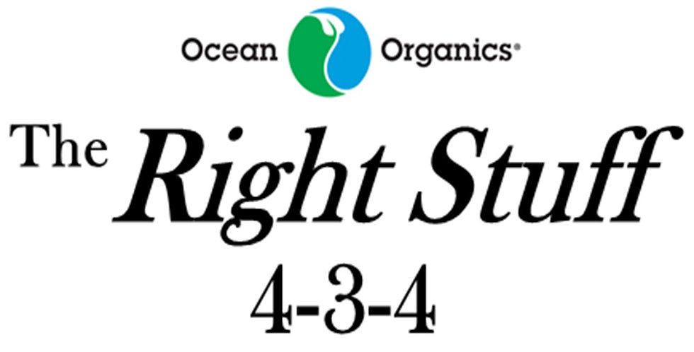 The Right Stuff  4-3-4
