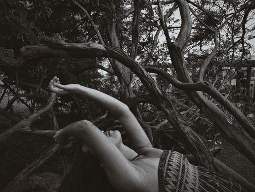No Parque Alberto Sampaio II, série Saudação> Síntyque Servulo