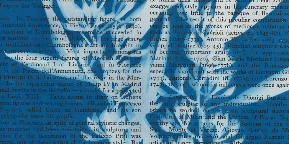 Act-Belong-Commit Art for Mindfulness - Printmaking (Cyanotypes)