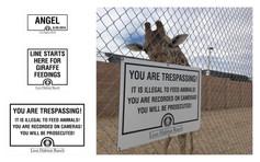 Lion Habitat Ranch: Signage