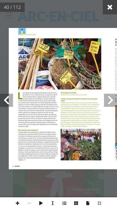 Magazine Air Caraibes 1 (2).jpeg