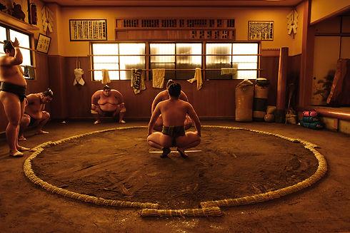 Sumo stables Tokyo Sumo Wrestling