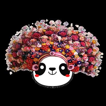 The Pandas (3).png