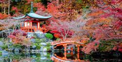 Japan Shrines VISIT JAPAN