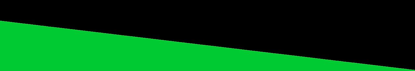 Zingtoys-Home-TopBanner-BottomBar-Green-
