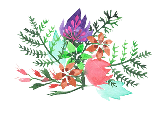 flores1-TRANSPARENTE.png