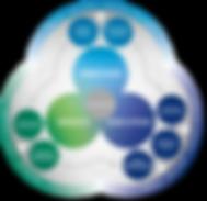 EFQM_MODEL_VIS_AWlivetype.png