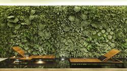 grupo-robusti-ambientes-decorados-3