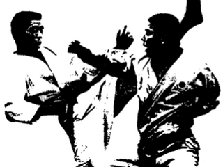 Can I Find Traditional Martial Arts in Wilmington, NC?