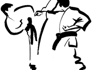 Where does old school karate fit in today's MMA world?