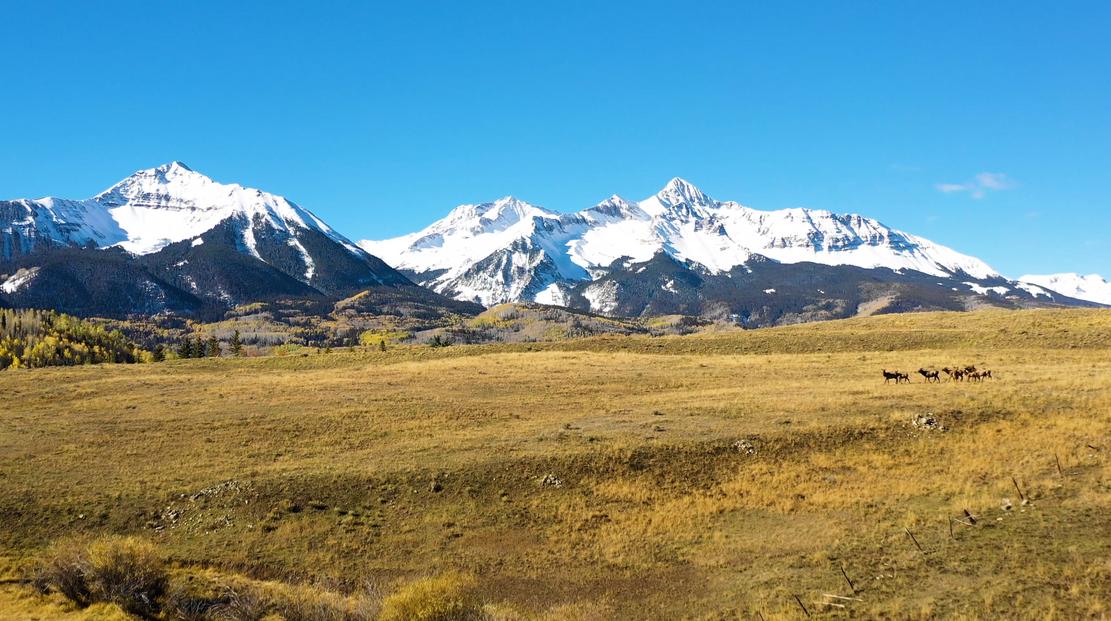 Colorado Elk.png