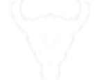 Minotaur Logo White
