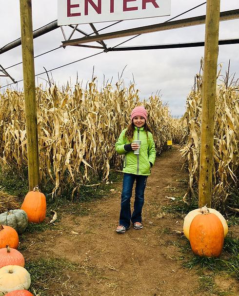 Otter Berry Farm Corn Maze Minnesota Pumpkin patch