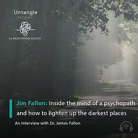 Jim Fallon Untangle Podcast