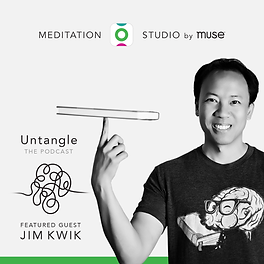 Jim Kwik, guest on Untangle Podcast