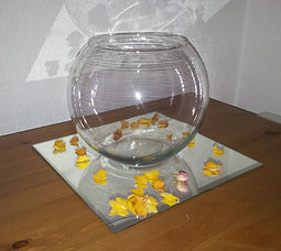 Mirror Plate Square with Fishbowl.jpg