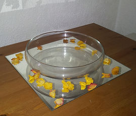 Mirror Plate Square with Flat Bowl (1).j