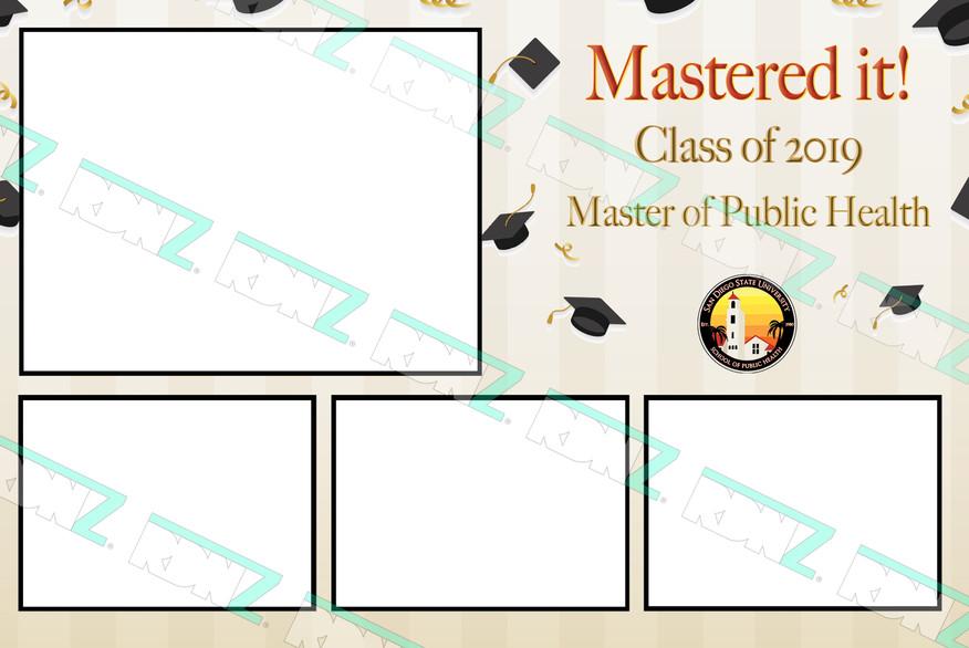 Master-of-Public-Health (1) copy.jpg