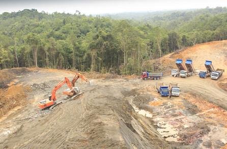 Borneo forest destruction