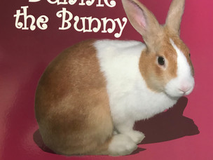 Bunnie the Bunny Childrens Book - Available NOW.
