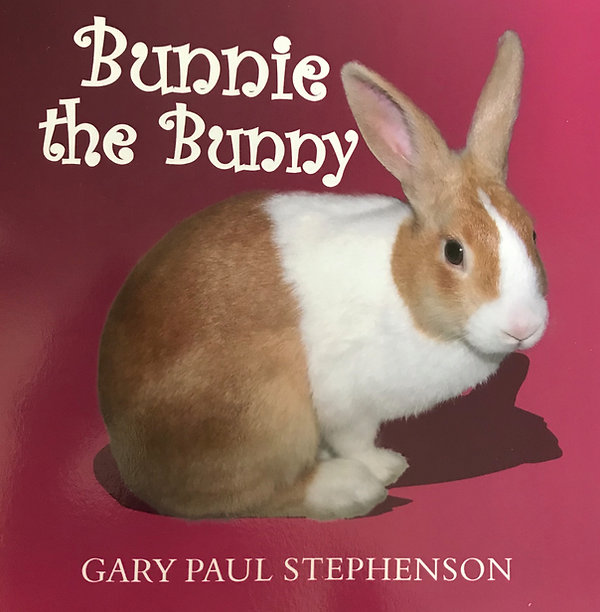 Bunnie the Bunny childrens book